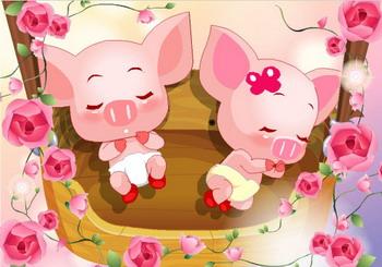 Q宠猪猪领养网友申请上百Q号为亲猪_QQ宠物
